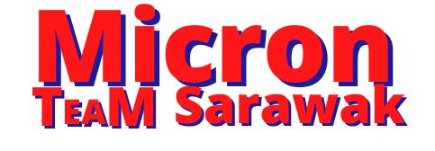 Micron TM (Sarawak) Sdn Bhd